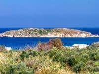 Villas-chania-olivevillarentals-thyme14
