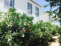 Villa Pitys in Spetses Greece, house 4, by Olive Villa Rentals
