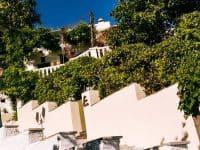 Olive Villa Rentals - Tinos-Villa Apollo&Daphne 3