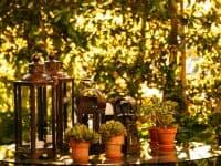 Olive Villa Rentals - Tinos-Villa Apollo&Daphne 30