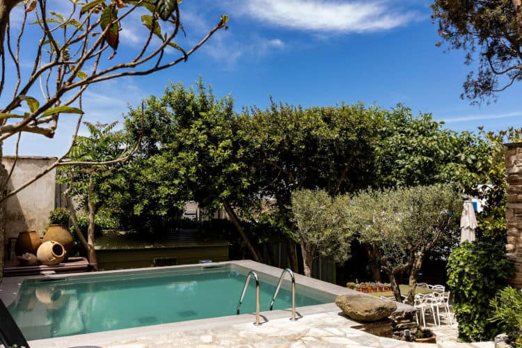 Villa-Daphne-Olive-Villa-Rentals-Tinos-pool