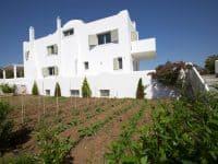 Villa-Celeste-Athens-by-Olive-Villa-Rentals-organic-garden