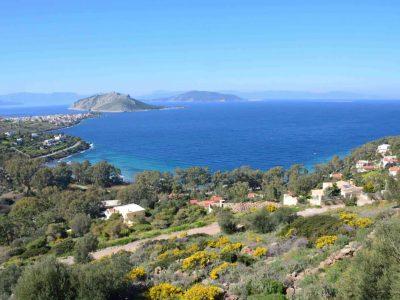 Villa Calypso in Aegina Greece, sea view, by Olive Villa Rentals