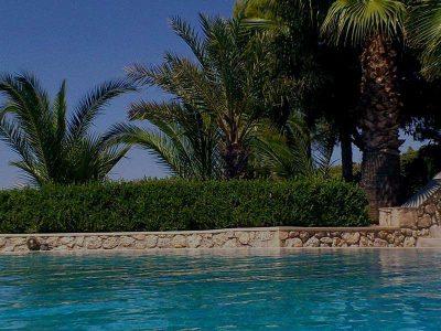 Villas-spetses-olivevillarentals-Camelia0