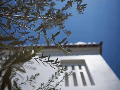 Villa Marina in Spetses Greece, house 2, by Olive Villa Rentals