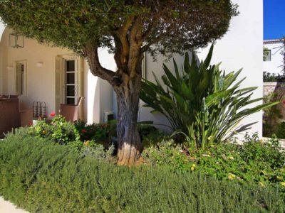 Villa- Marina -Spetses-by-Olive-Villa-Rentals-pool-area-garden